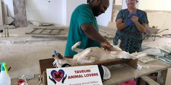 Taveuni Animal Lovers