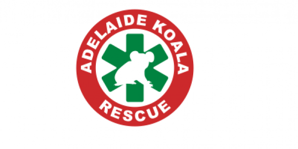 Adelaide Koala Rescue