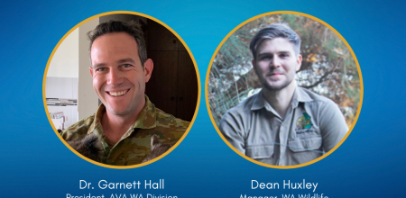 AVERT webinar announcement: April 8, 6.30pm AEST